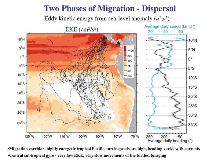 Two Phases of Migration - Dispersal