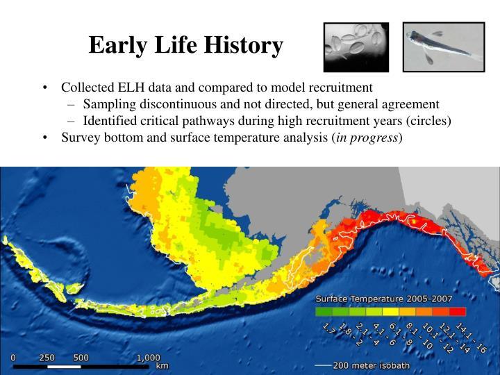Early Life History
