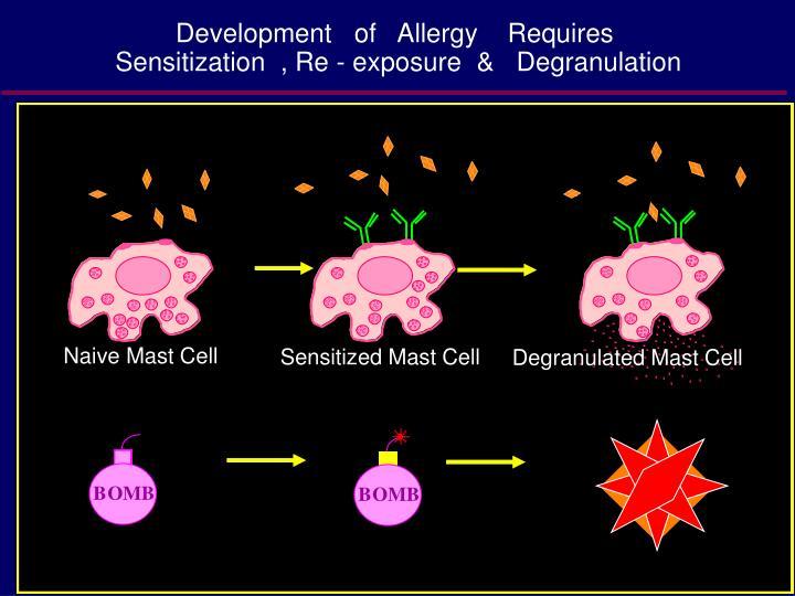 Development   of   Allergy    Requires
