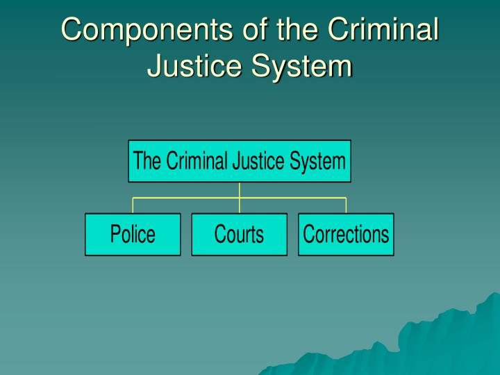Components of the Criminal Justice System