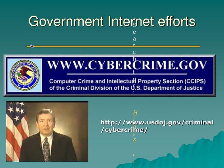 Government Internet efforts