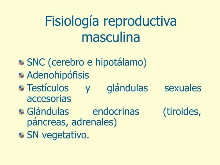 Fisiología reproductiva masculina