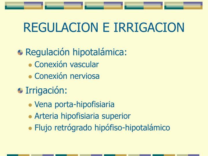 REGULACION E IRRIGACION