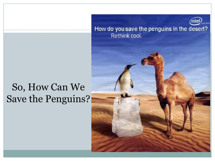 So, How Can We Save the Penguins?
