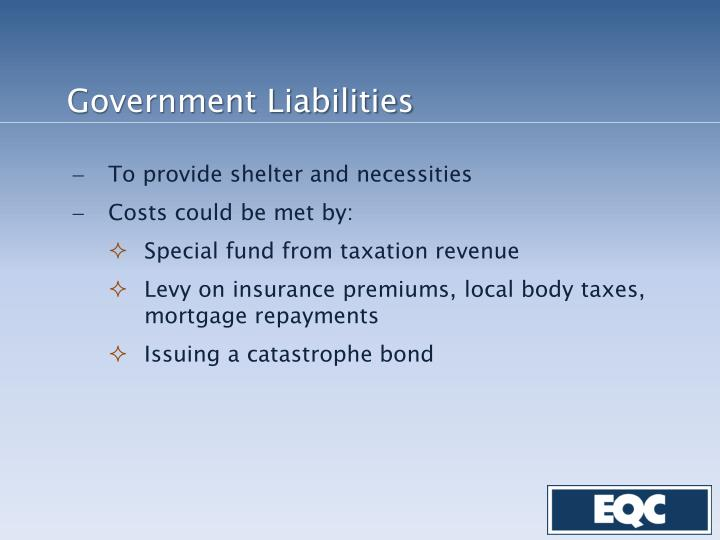 Government Liabilities