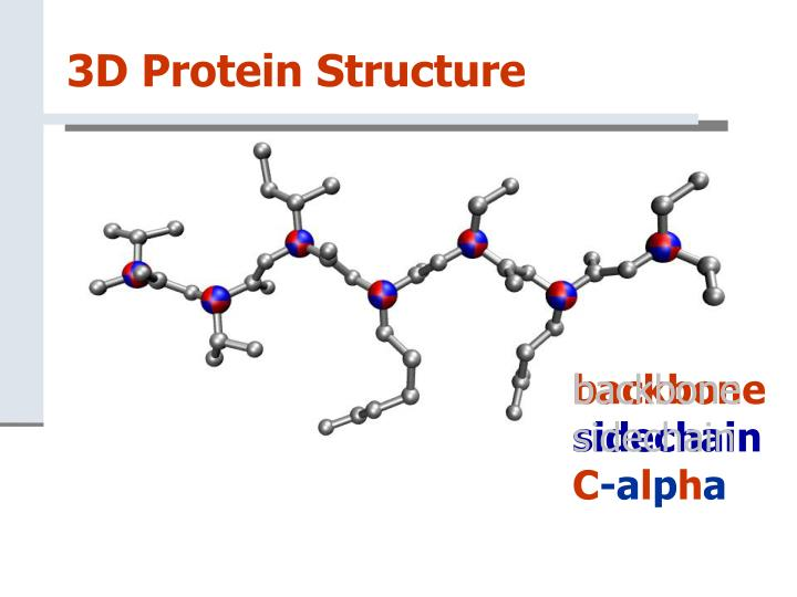 3D Protein Structure