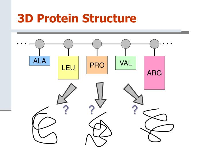 3d protein structure1