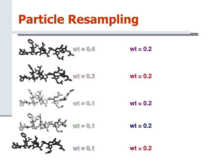Particle Resampling