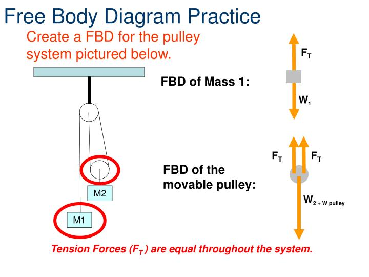 Free Body Diagram Practice