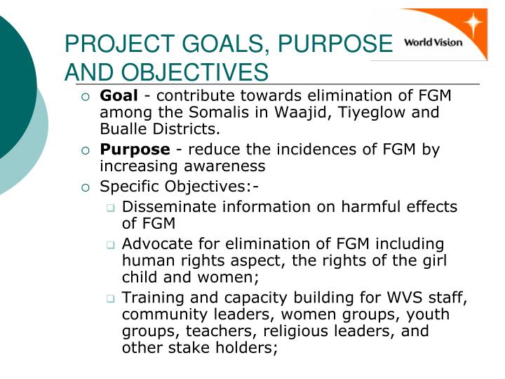 PROJECT GOALS, PURPOSE AND OBJECTIVES