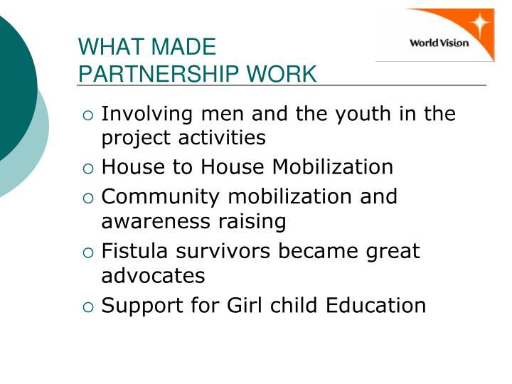 WHAT MADE PARTNERSHIP WORK