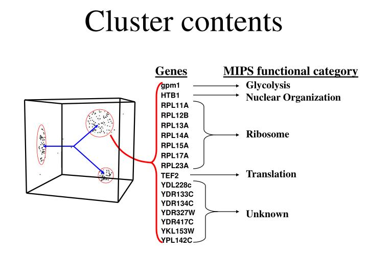 Cluster contents