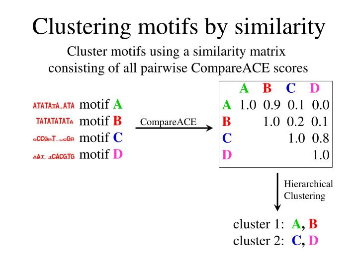 Clustering motifs by similarity