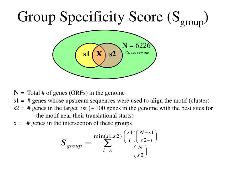 Group Specificity Score (S
