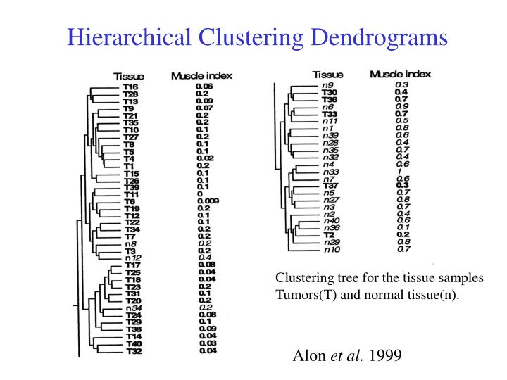 Hierarchical Clustering Dendrograms