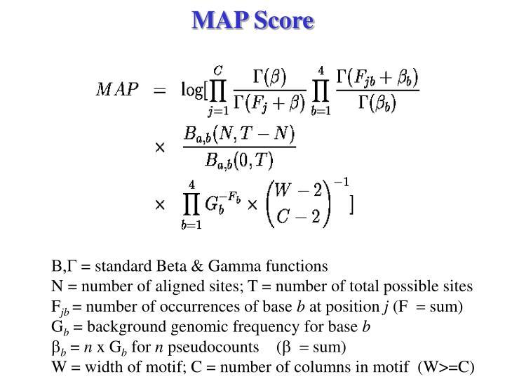 MAP Score