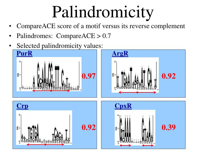 Palindromicity