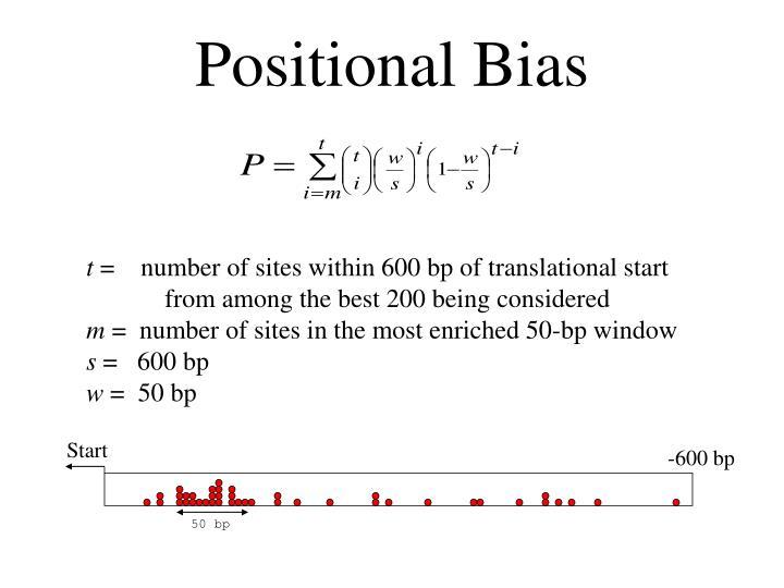 Positional Bias
