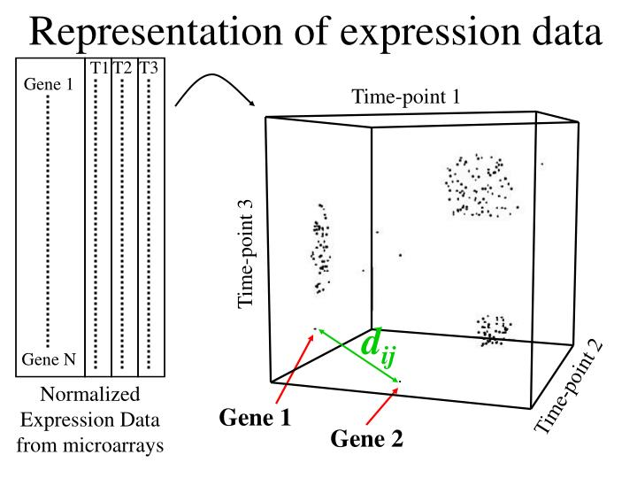Representation of expression data