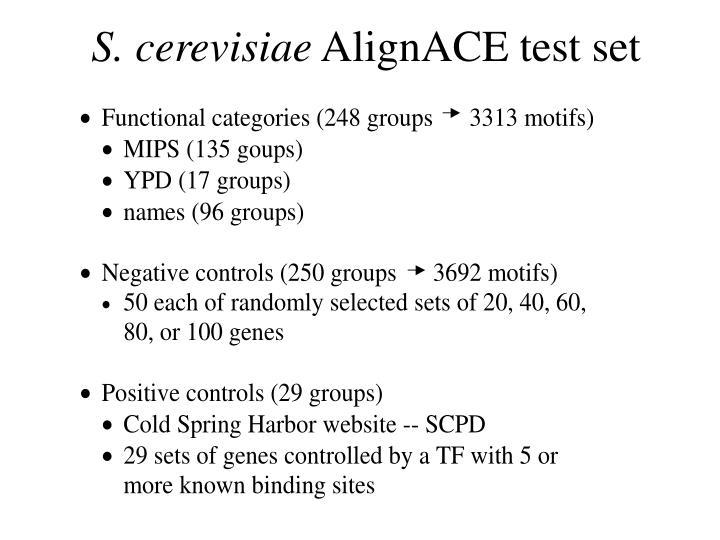 S. cerevisiae
