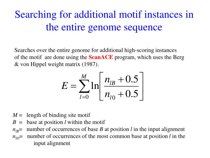Searching for additional motif instances in the entire genome sequence