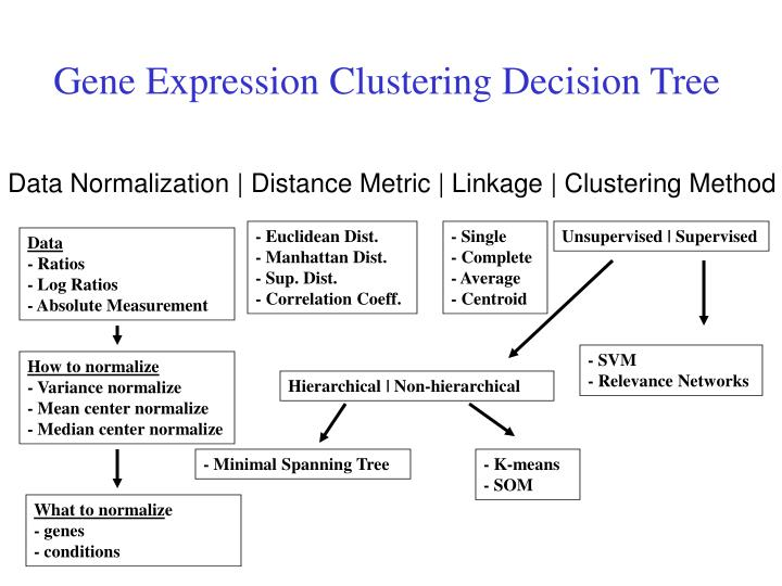 Gene Expression Clustering Decision Tree