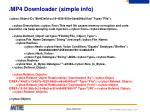 mp4 downloader simple info