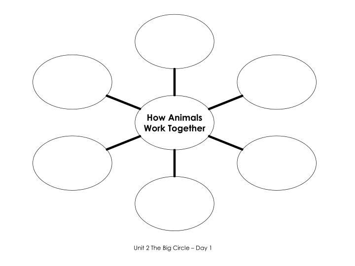 Unit 2 The Big Circle – Day 1