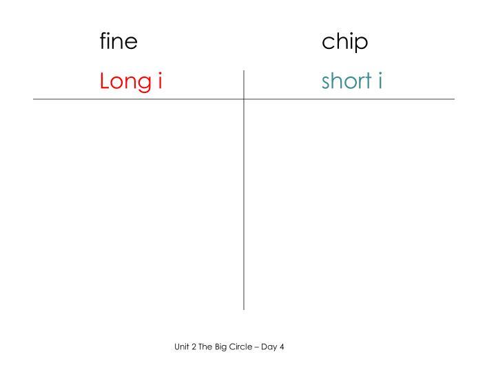 fine                              chip