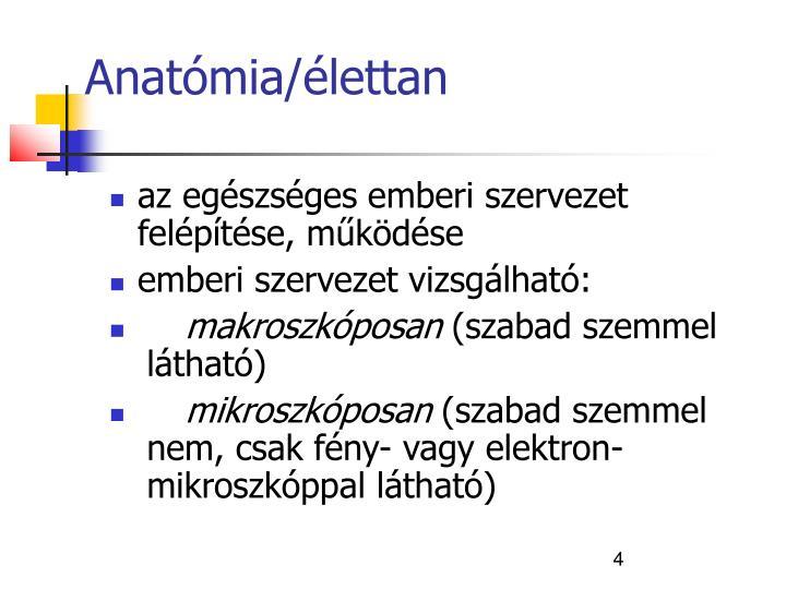Anatómia/élettan