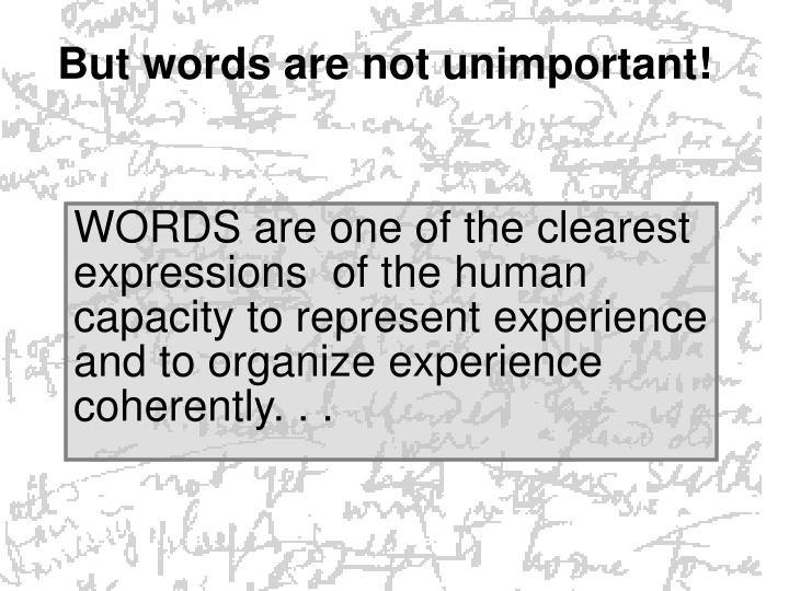 But words are not unimportant!