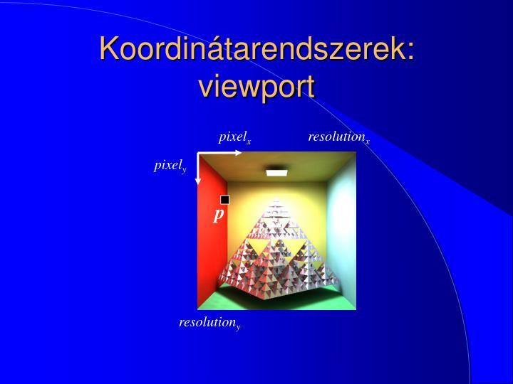 Koordinátarendszerek: