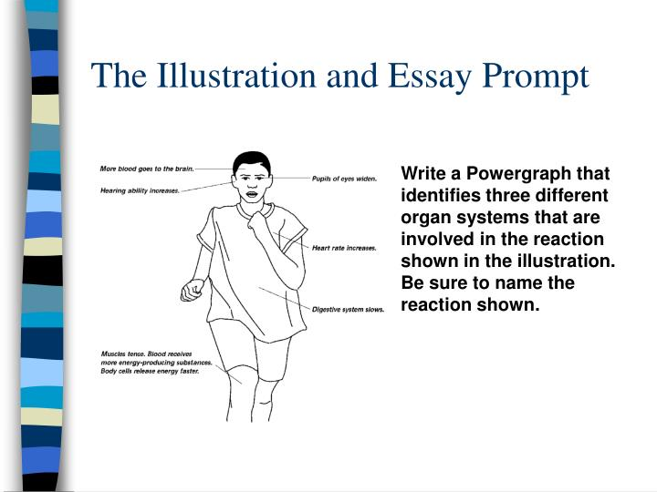 The Illustration and Essay Prompt