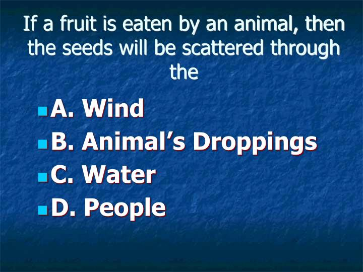 If a fruit is eaten by an animal, then the seeds will be scattered through the
