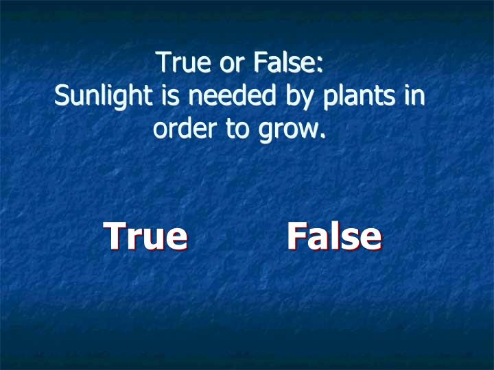 True or False: