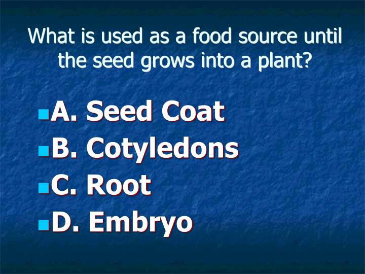 What is used as a food source until the seed grows into a plant?