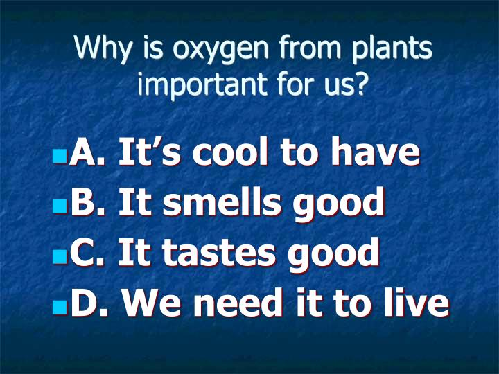 Why is oxygen from plants important for us?