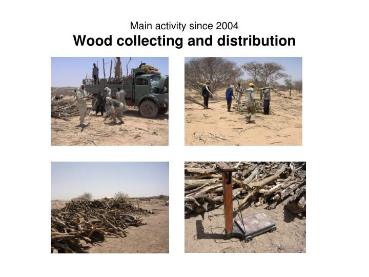 Main activity since 2004