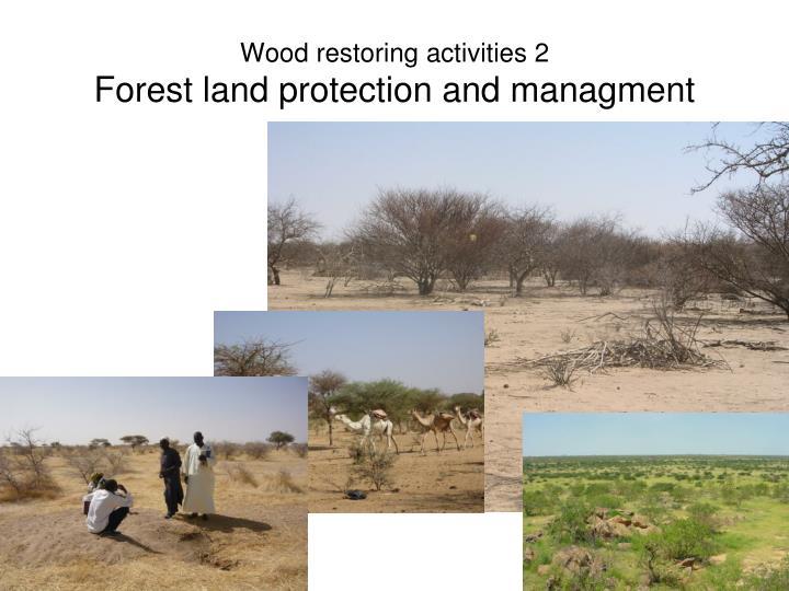 Wood restoring activities 2