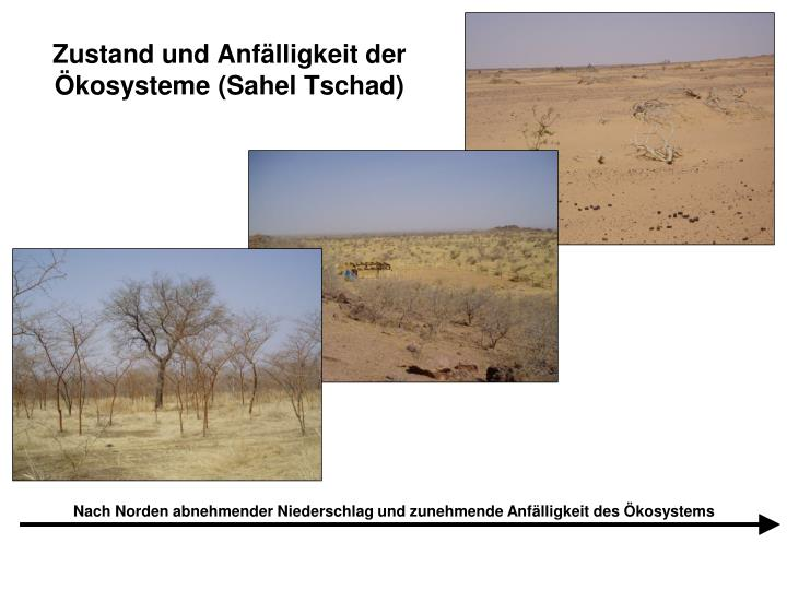 Zustand und Anfälligkeit der Ökosysteme (Sahel Tschad)