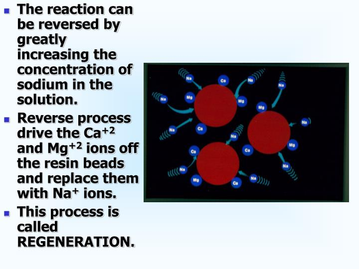 The reaction can be reversed by greatly increasing the concentration of sodium in the solution.