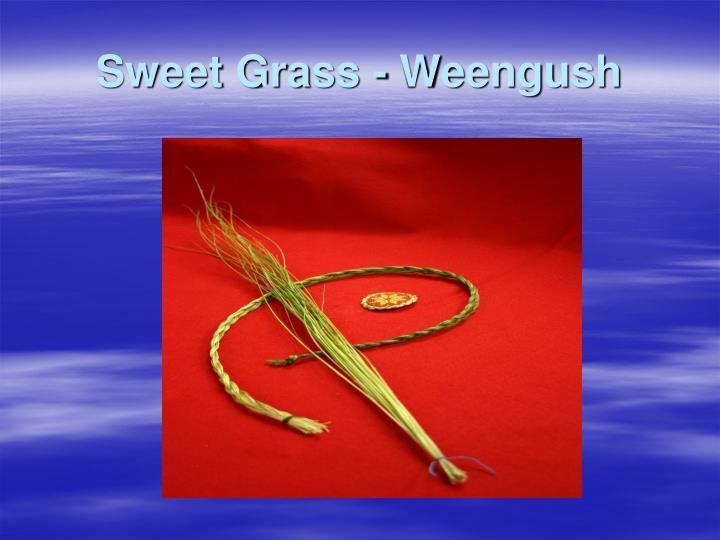 Sweet Grass -