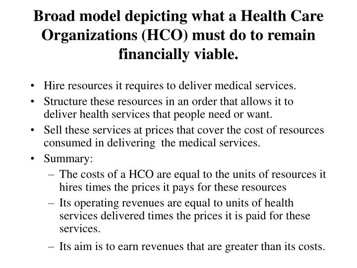 Broad model depicting what a Health Care Organizations (HCO) must do to remain financially viable.