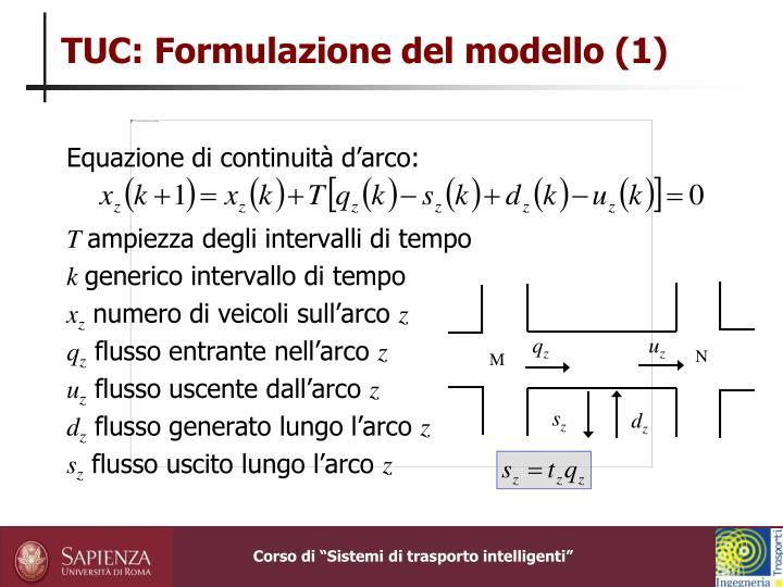 TUC: Formulazione del modello (1)