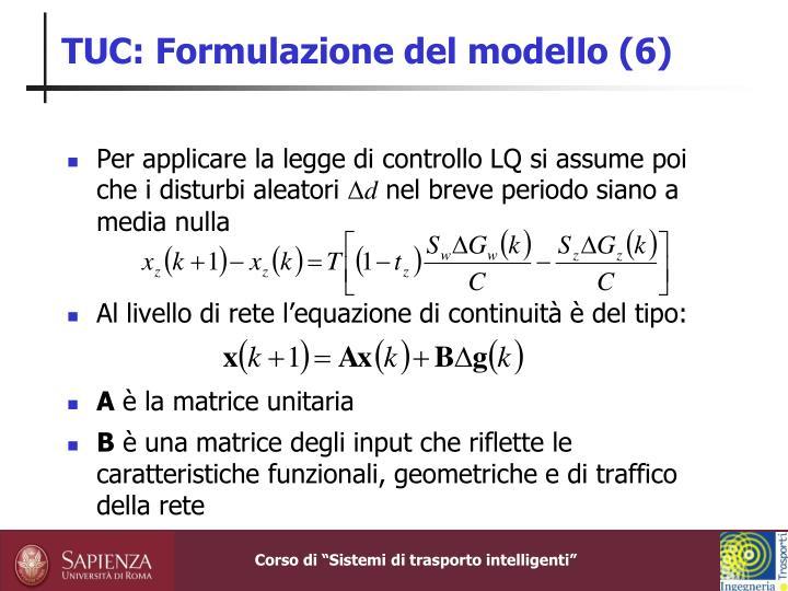 TUC: Formulazione del modello (6)
