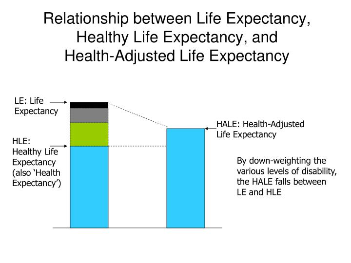 The relationship between fertility and lifespan in humans
