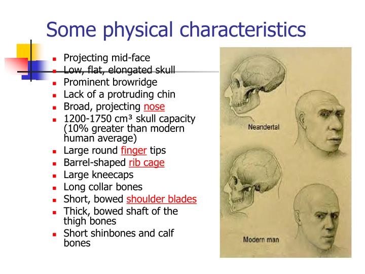 Some physical characteristics
