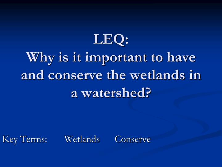 Leq why is it important to have and conserve the wetlands in a watershed