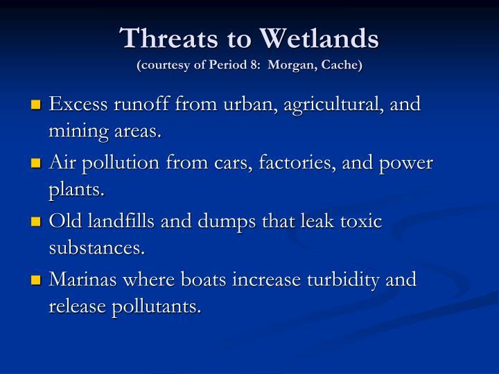 Threats to Wetlands