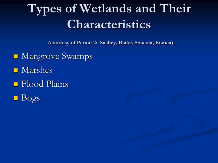 Types of Wetlands and Their Characteristics